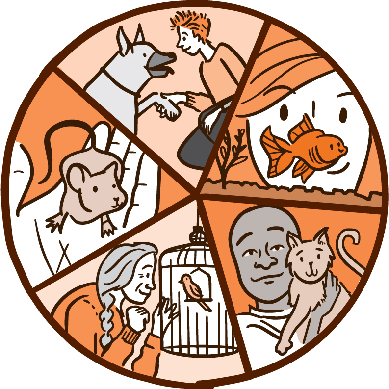 The Power Of Pets Nih News In Health