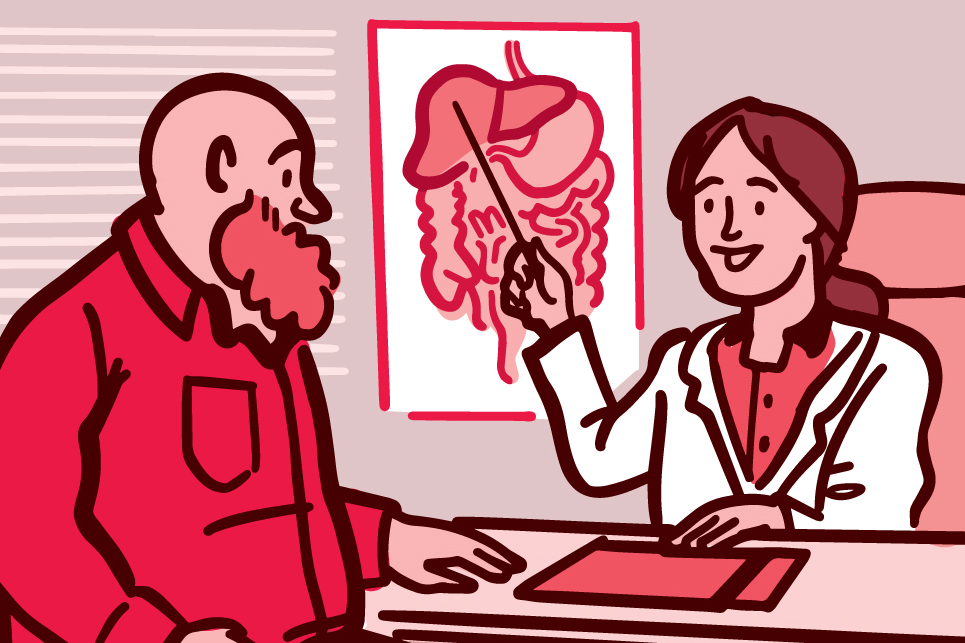 Illustration of a doctor showing their patient a diagram of the liver