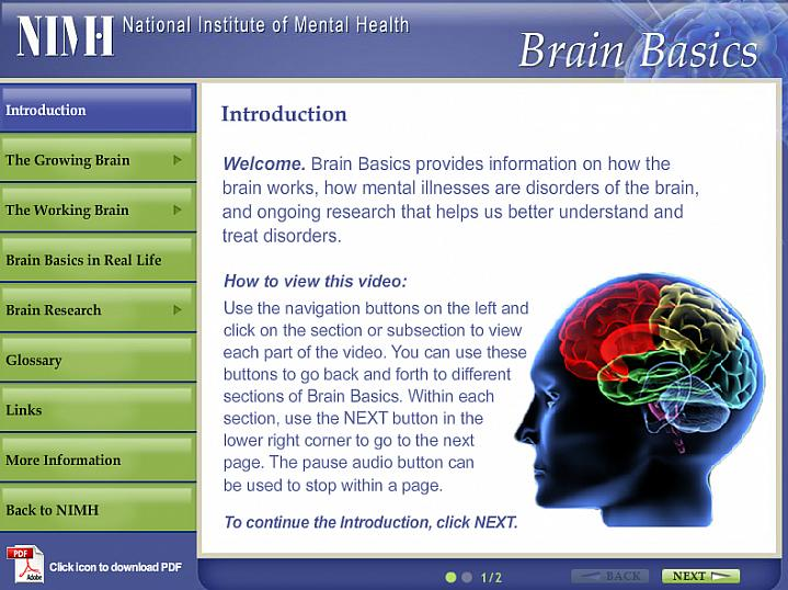 Screen capture of the homepage for Brain Basics.