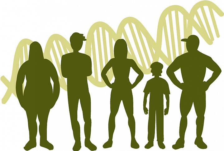 Illustration of human silhouettes, of different sizes and shapes, atop a background of the DNA double-helix.