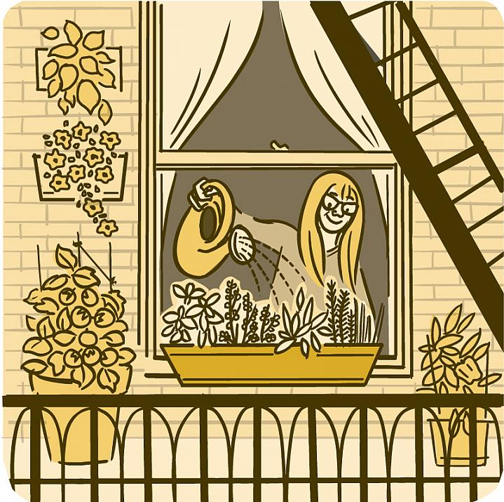 Illustration of a woman watering a container of plants on her windowsill.