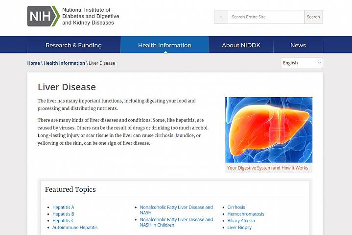 Screenshot of the liver disease website